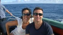 Glow Worm Sunset Cruise from Providenciales, Providenciales, Night Cruises