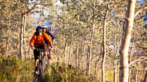 Guided Mountain Biking Adventure from Whitehorse, Whitehorse, Multi-day Tours
