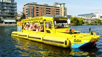 Dublin Viking Duck Tour, Dublin