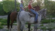 Niagara Falls Horseback Riding, Niagara Falls & Around, Helicopter Tours