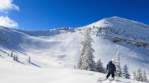 Grand Targhee Round-Trip Transport from Jackson Hole with Optional Lift Ticket, Jackson Hole, Lift ...