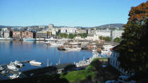 Panoramic Oslo City Sightseeing Tour, Oslo, Bus & Minivan Tours