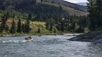 Scenic Raft Trip on Jackson Hole's Snake River, Jackson Hole, White Water Rafting & Float Trips