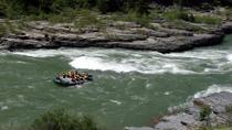 Snake River Whitewater Rafting Trip from Jackson Hole, Jackson Hole, Half-day Tours