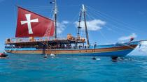 Lunch and Snorkel Sail in Barbados, Barbados, Half-day Tours