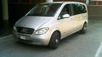 Shared Arrival Transfer: Florence Airport to Florence Hotels, Florence