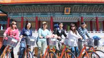 Taipei in Motion: City Day Tour by Bike, Metro and Foot, Taipei, null
