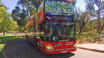 Perth Hop-On Hop-Off Bus Tour, Perth, Lunch Cruises