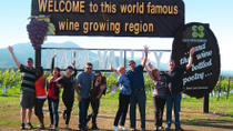 Small-Group Wine-Tasting Tour through Napa or Sonoma Wine Country, Napa & Sonoma, Private Tours