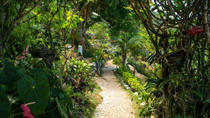 Ahhh Ras Natango Gallery and Garden Tour from Montego Bay, Montego Bay, Cultural Tours