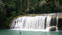 YS Falls Tour from Negril, Negril, Swim with Dolphins