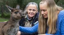 Healesville Sanctuary: Indigenous Wildlife Experience, Victoria, Zoo Tickets & Passes
