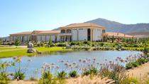Estancia El Cuadro Winery Tour from Santiago Including Carriage Ride and Folkloric Show, Santiago, ...