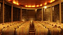 Matetic Winery Day Trip in San Antonio Valley from Santiago, Santiago, Wine Tasting & Winery Tours