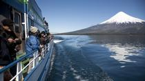 Puerto Varas to Bariloche Andean Lakes Crossing with Optional Return, Patagonia, Day Cruises