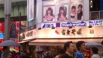 Experience Akihabara Electric Town: Karaoke, Anime and Cosplay in Tokyo, Tokyo, Cultural Tours