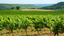 Private Tour: Fronton Wine Tasting Trip from Toulouse, Toulouse, Private Sightseeing Tours