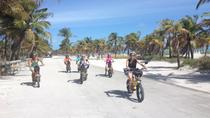 Guided Electric Bike Tour of Key Biscayne or South Beach, Miami, Air Tours