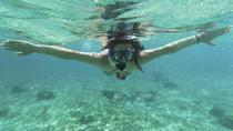 Curacao Snorkel Adventure, Curacao, 4WD, ATV & Off-Road Tours
