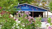 Skagway Shore Excursion: Jewell Gardens Tour and Glassblowing Demonstration, Skagway
