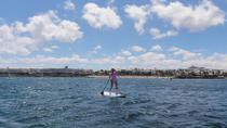 Stand-Up Paddleboard Experience in Lanzarote, Lanzarote, Other Water Sports