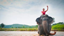 Elephant Trail Expedition from Luang Prabang, Luang Prabang, Nature & Wildlife