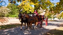 Colonial Williamsburg City Tour, Washington DC, Bike & Mountain Bike Tours