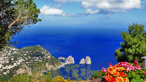 3-Day Tour from Florence: Naples, Pompeii, Sorrento, Capri and Mt Vesuvius, Florence, Multi-day ...