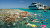 3-Day Great Barrier Reef Tour: Lady Musgrave Island and the Town of 1770, Brisbane, Day Cruises