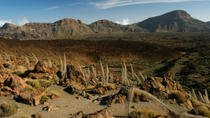 Tenerife Shore Excursion: Private Teide National Park and Winery Tour with Lunch, Tenerife, Ports ...