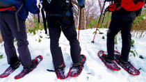 Snowshoe Hiking Tour Including Lunch from Sapporo, Sapporo, Ski & Snow