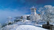 2-Day Yongpyong Ski Resort Tour from Seoul, Seoul, Ski & Snowboard Rentals