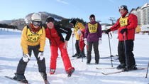 3-Day Yongpyong Ski Resort Tour Including Sheep Farm Visit, Seoul, Ski & Snowboard Rentals