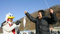 Ice and Snow Festival at Hwacheon from Seoul, Seoul
