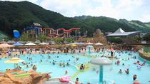 Water Park Day Tour at Ocean World in Vivaldi Park, Seoul, Water Parks