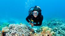 4-Day PADI Open Water Diver Course in Freeport, Freeport