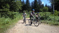 Mountain Bike Tour from Sapporo Including Hoheikyo Onsen and Lunch, Sapporo, null