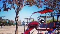 Montreal Quadricycle Rental, Montreal, Boat Rental