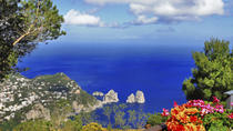 Capri Day Cruise from Sorrento, Sorrento