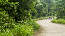 Day Trip to Cuc Phuong National Park from Hanoi, Hanoi, Day Trips