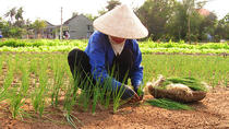 Full Day: Local Villages and Crafts Tour from Hoi An, Hoi An, Cultural Tours
