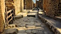 Pompeii and Wine Tasting Experience from Sorrento, Sorrento, Day Trips