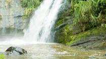 Grenada Island Tour: Concord Waterfall, Gouyave Nutmeg Station and Grand Etang Lake, Grenada, ...