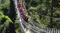 Douglas Island Zipline Tour from Juneau, Juneau, Custom Private Tours