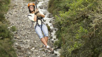 Ketchikan Zipline Adventure, Ketchikan, Air Tours