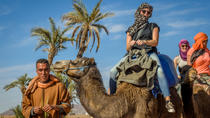 Desert and Palm Grove Camel Ride from Marrakech Including Berber Village Visit, Marrakech, Nature & ...