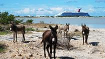 Grand Turk Historical Sightseeing Tour by Tram, Grand Turk, Snorkeling