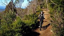 Mountain Bike Tour from Hobart, Hobart, Bike & Mountain Bike Tours