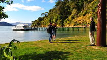 Motuara Island Bird Sanctuary and Ship Cove Cruise from Picton, Picton, Day Cruises