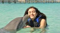 Private Island Dolphin Swim from Nassau, Nassau, Snorkeling